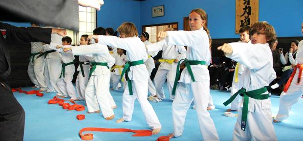 Port Perry Karate Kids