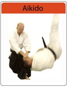 aikido_info
